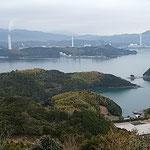 阿南市椿町の椿自然園から阿波の松島と呼ばれる橘湾が見えました。    ・断崖の絶壁にまで咲く椿(和良)