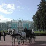 大黒屋光太夫がエカテリーナ二世に拝謁した宮殿です。琥珀の間で有名です。 ・光太夫来たりし宮殿空澄めり(和良)