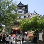国宝・犬山城の階段は急でした。風格のあるお城でした。                                ・天守閣杜鵑花明かりの上にあり(和良)
