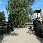 アウシュビッツ強制収容所の入り口の門は昔のままに残されていました。 ・アウシュビッツ訪れし日の酷暑かな(和良)