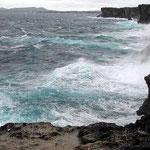 冬の沖縄にはじめて行きました。読谷村の残波岬は大荒れでした。 ・大寒の残波の岬海荒るる(和良)