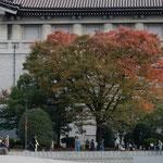 上野の国立博物館の正倉院展は入館するのに2時間かかりました。 ・冬空を二時間待ちて見る展示(和良)