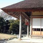 鳴門市の大塚製薬・潮騒荘で見た大藁屋です。のどかな風景でした。 ・大藁屋つるせる柿に冬日かな(和良)