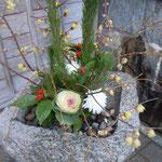 初句会のあった徳島市の渭水苑の門前に臘梅が活けてありました。                         ・門前に臘梅活けて客を待つ(和良)
