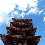 聖徳太子が創建した四天王寺の五重塔です。秋空に映えていました。 ・秋空を仰ぎ五重塔仰ぐ(和良)