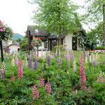 小さなヨーロッパにふさわしいオルゴールの森の庭園でした。      ・瀟洒なる洋館の庭ジキタリス(和良)