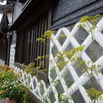 長野県東御市にある北国街道の海野宿を歩いてきました。        ・海鼠壁続く街道女郎花(和良)