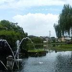 江川・鴨島公園は水の公園として市民に親しまれています。 ・長梅雨の明けたる空の青さかな(和良)