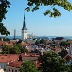 エストニアのタリンです。バルト海が見えました。           ・海よりの風の涼しきタリンかな(和良)