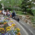 阿波市土成町では手作りのミニ蒸気機関車が子供たちの人気を集めていました。  ・手作りの蒸気機関車風薫る(和良)