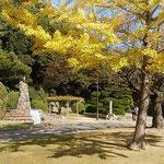 徳島城公園の小便小僧の像にも小春に日差が差していました。        ・少年の裸像に冬日暖かく(和良)