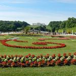シェーンブルン宮殿の裏には花壇のある広大な庭園がありました。    ・宮殿の裏は庭園風涼し(和良)