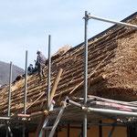 大内宿で屋根の葺き替えを見ました。段取りよく進んでいました。    ・茅屋根の葺き替え工事寄り合ひて(和良)