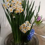 徳島市で開かれた絵画展会場に水仙の生花が飾られていました。 ・犇めきて立つ生花の水仙は(和良)