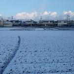 南国の徳島に雪が降りました。全国へのニュースになりました。     ・青空も見えて明るき阿波の雪(和良)