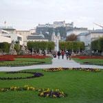 ザルツ゚ブルグのミラベル庭園は映画サウンドオブミュージックの舞台です。 ・庭園は名画の舞台冬紅葉(和良)