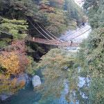 祖谷のかずら橋は紅葉の中にありました。                                        ・秘境かな紅葉早しかずら橋(和良)