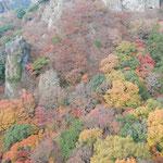 小豆島の寒霞渓のロープウエイから眺めた紅葉は見事でした。  ・渓谷に綾なす錦寒霞渓(和良)