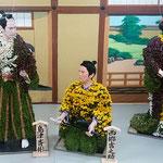 吉野川市鴨島町の菊人形です。今年は人気ドラマの西郷どんでした。   ・若武者よ菊人形の西郷どんは(和良)