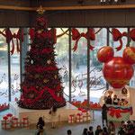 東京駅前の丸ビルにもクリスマツリーがありました。                                   ・子らの夢ふくらむ聖樹なりしかな(和良)