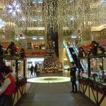 羽田空港のロビーにも大きなクリスマスツリーがありました。                              ・吹き抜けの空港ロビー大聖樹(和良)