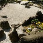 旧徳島城表御殿庭園には石庭があり石蕗の花の黄色が映えていました。    ・石庭の白を極めし石蕗の花(和良)