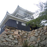 浜松城は出世城とも言われています。                                            ・若き日の家康の城新樹晴(和良)