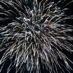 鳴門市のリゾートホテルでは点灯式の後、花火が揚がりました。 ・冬の夜の花火の音のよく響く(和良)