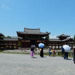 炎天にもかかわらず平等院鳳凰堂には観光客が詰めかけていました。   ・平等院日傘の列の途切れなく(和良)