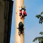 五月柱を登っているのは初夏の来たことを喜ぶ子供の人形でした。    ・人形も五月柱を登る初夏(和良)