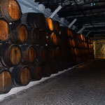 ポルトガルワインの老舗であるサンデルマンのワイナリーです。 ・ワイナリー巡ればそぞろ寒くなる(和良)