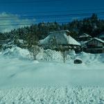 藁屋では雪下ろしをしてもまたすぐに積もってしまうそうです。     ・藁屋根に積もりし雪の嵩を聞く(和良)
