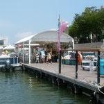 両国橋北詰のひょうたん島クルーズの乗場には客が待っていました。 ・もう一巡してみたかりし船遊(和良)