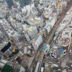 渋谷スカイの直下に渋谷のスクランブル交差点がよく見えました。  ・天空のビルに冬日の暖かく(和良)