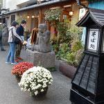 深大寺門前の蕎麦屋さんは江戸時代からの老舗。菊が綺麗でした。 ・門前の蕎麦屋の老舗菊の花(和良)