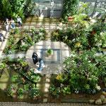 兵庫県淡路市の奇跡の星の植物館は冷房が効いていました。       ・冷房の効いた室内植物館(和良)