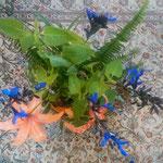 野に咲く鬼百合を生けてみましたと持ってきてくれました。           ・鬼百合を小鉢に生けて持ちくれし(和良)