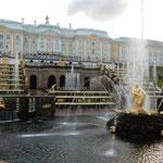 ピョートル大帝の夏の宮殿の噴水は大きな水しぶきを上げていました。  ・噴水のしぶきに濡れて苑巡る(和良)