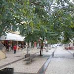 ファティマの町ではジャカランタの並木が実をつけていました。  ・ジャカランタ実をつけ秋の古都静か(和良)