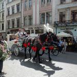 クラクフの街では観光客を乗せた中世風馬車が走っていました。     ・中世の馬車に乗り込むサングラス(和良)