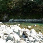 月ヶ谷温泉の前を流れる勝浦川で河鹿が鳴いていました。 ・聞きをれば近づいて来る河鹿かな(和良)