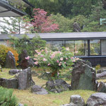 昼神温泉の宿ではまだ百日紅が咲き継いでいました。                                ・百日紅咲き継ぐ山の湯宿かな(和良)