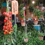 東京・浅草の鬼灯市に行って来ました。江戸の風情がありました。 ・鬼灯市水を撒く手の白さかな(和良)