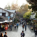 新蕎麦を食べに今年も東京の深大寺の門前町に行きました。  ・新蕎麦は深大寺へと今年また(和良)
