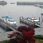大津ではホテルの窓の露を払うと下に琵琶湖がありました。 ・露けしや大津は湖へいでし街(和良)