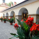 クラクフ郊外にあるカルバニア・ゼブジドフスカの教会です。      ・教会の中庭静かカンナ咲く(和良)