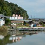 近江八幡市で水郷巡りをしました。約1時間舟で巡ってきました。        ・水郷を巡る近江の秋晴れに(和良)