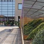 吉野川市鴨島町の菊花展は市役所の前庭でひろびろと行われました。 ・市役所の庭一面の菊花展(和良)