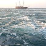 満ち潮は白波を立てながら瀬戸内海の方へ流れ込んでいました。        ・秋日濃し鳴門の渦の白波に(和良)