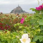 浜茄子の咲く海岸の丘から見えたモンサンミッシェルです。                              ・浜茄子の丘よりモンサンミッシェル見え(和良)
